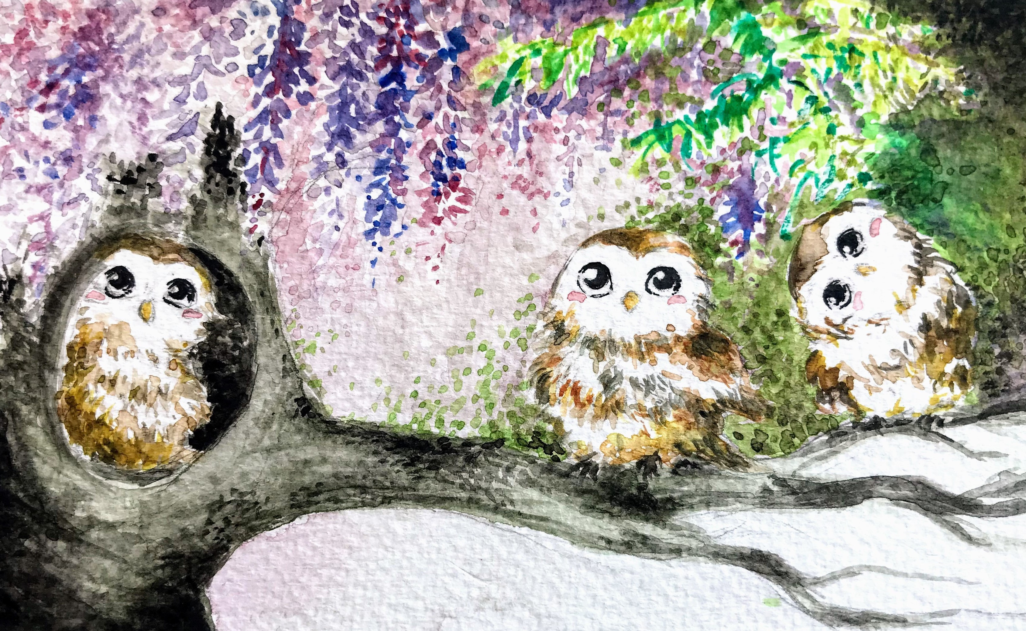Watercolour: Owls