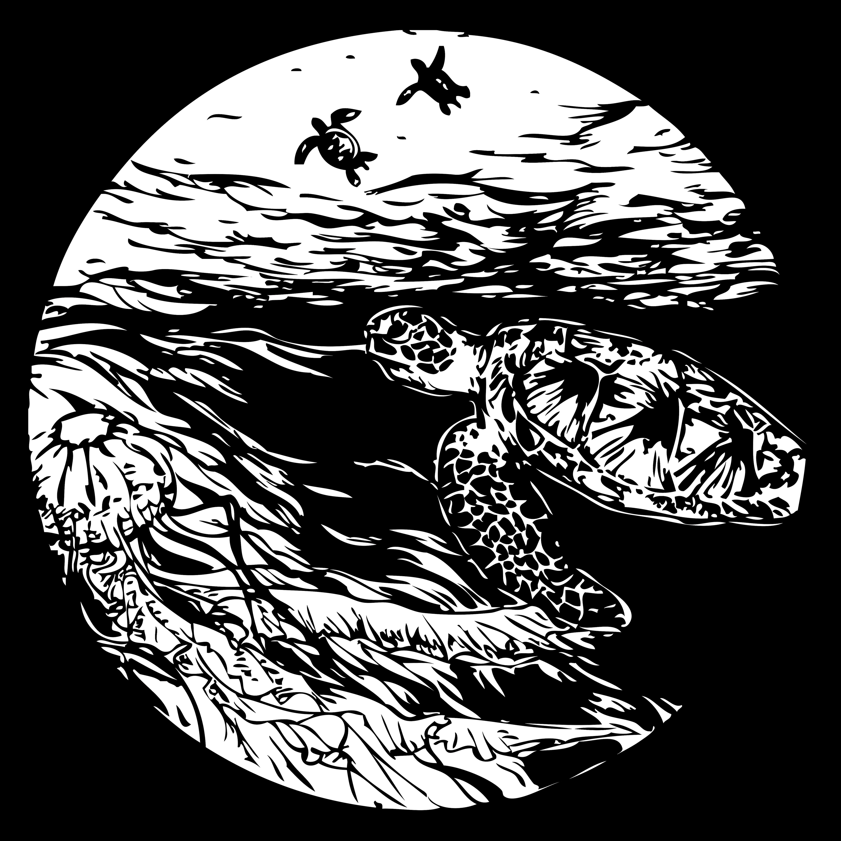 Wildlife Print: Sea Turtle